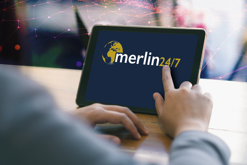 Image for Merlin Protect 24/7 - Business Intelligence Software